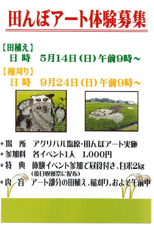 5/14 田んぼアート体験 (田植え)募集!
