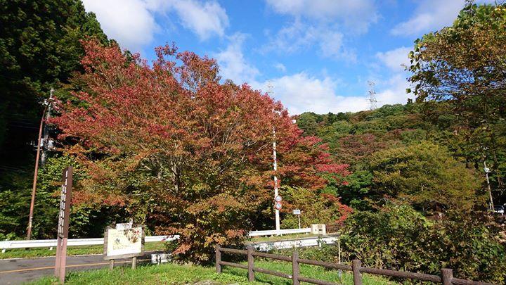 板室周辺の紅葉