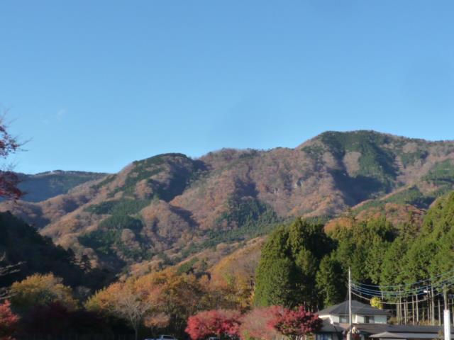 塩原の紅葉は現在降下中です。